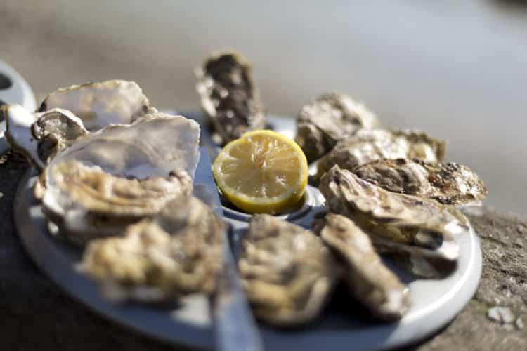 La semaine du goût aux Thermes Marins de Saint-Malo 3